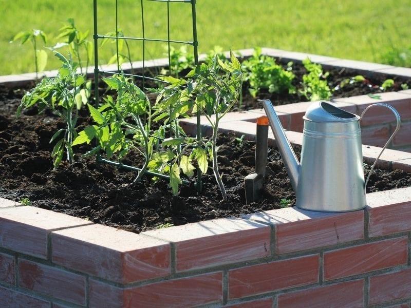 Raised garden beds - JTD
